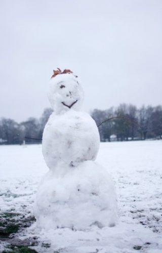 bonhomme de neige dans un champ