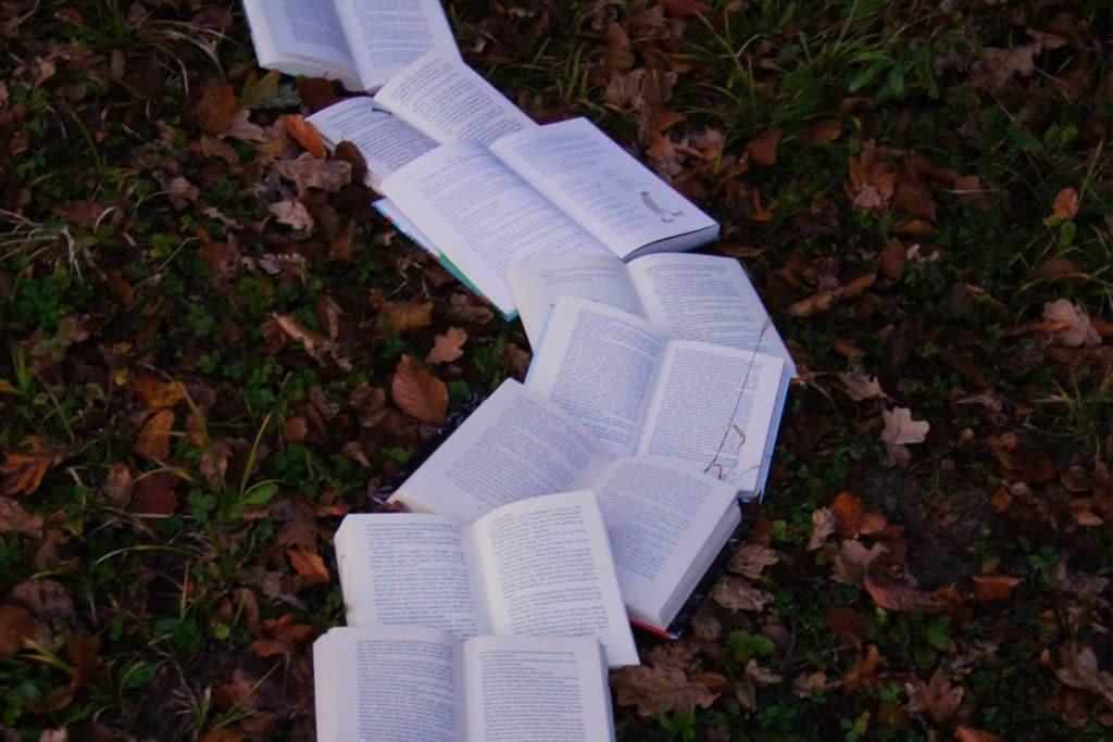 Les étapes d'un séjour linguistique : tout comprendre