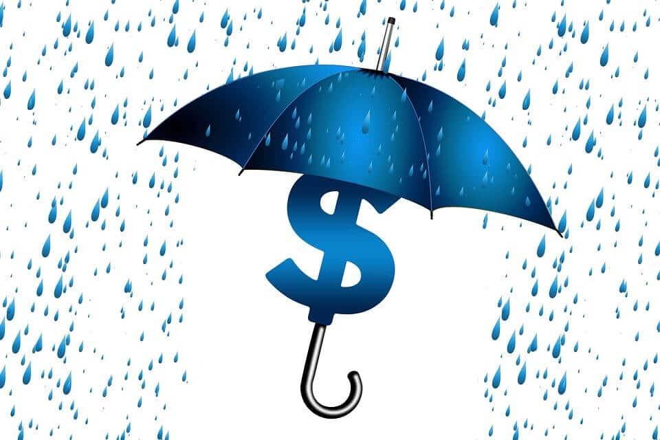 illustration d'un signe dollar protégé sous un parapluie