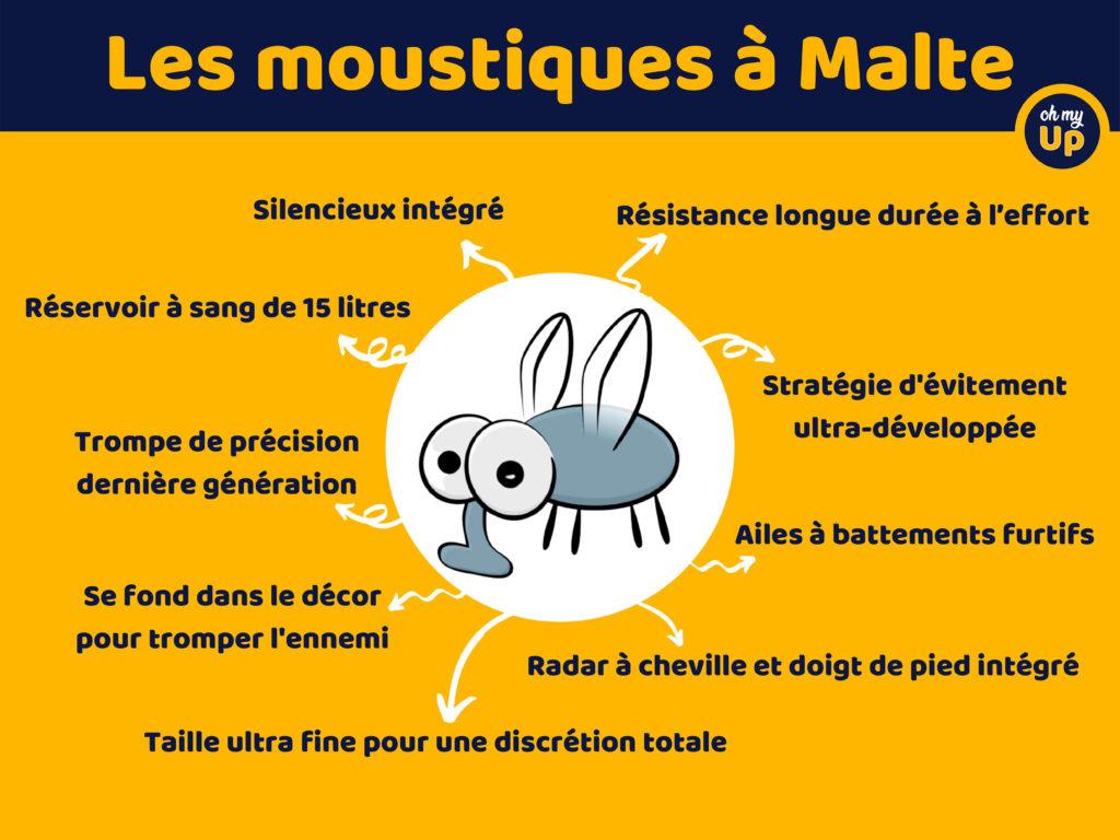 le moustique de Malte