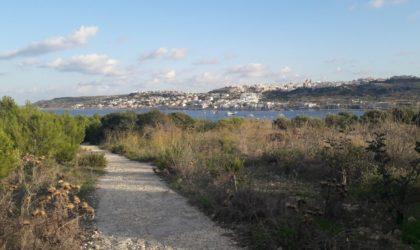 vue sur saint paul's bay à Malte
