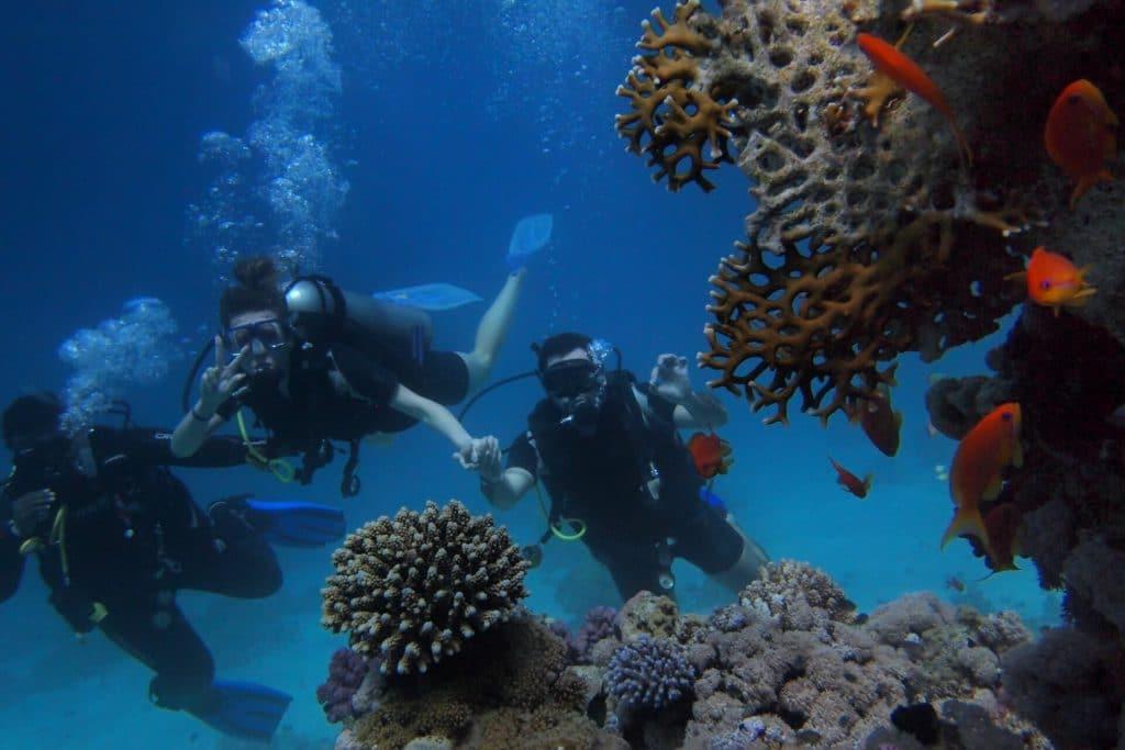 trois plongeurs sous l'eau